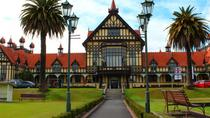 Shore Excursion: Rotorua Sightseeing Tour from Tauranga, Tauranga, Ports of Call Tours