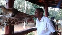 Nairobi Private Small-Group Guided Tour, Nairobi, Day Trips