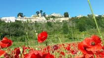 Half day private tour for 4-8 person, Avignon, Private Sightseeing Tours