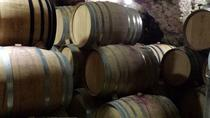 Half-Day Small-Group Provence Cru Wine Tour from Avignon, Avignon, Wine Tasting & Winery Tours