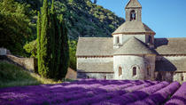 Half Day Tour : Beauty of Lavender, Avignon, Cultural Tours
