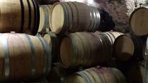 Small Group Half-Day Best Cru of Provence Wine Tour from Avignon, Avignon, Wine Tasting & Winery ...