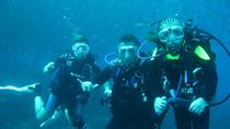 Half-day Scuba Diving Tour in the Catalina Islands of Costa Rica, Tamarindo, Scuba Diving