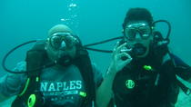 Introductory 5-Hour Scuba Diving Tour in Costa Rica from Tamarindo, Tamarindo, Scuba Diving