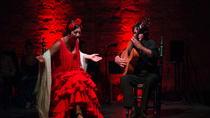 Jerez Flamenco Day Trip from Malaga, Malaga, Day Trips