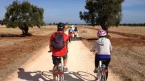 Puglia Bike Tour: Cycling Through the History of Extra Virgin Olive Oil, Puglia