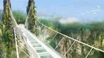 Zhangjiajie Grand Canyon and Glass Bridge, Zhangjiajie, Bus & Minivan Tours