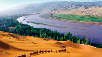 One-Day Tour: Shapotou Scenic Area From Yinchuan, Northwest China, Day Trips