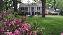 Memphis Day Trip with VIP Access to Graceland from Nashville, ナッシュビル