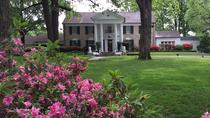 Memphis Day Trip with VIP Access to Graceland, Nashville