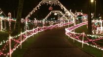 Nashville Holiday Lights Tour Including Lotz House, Nashville, Museum Tickets & Passes