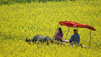 Five-day colorful and in-depth trip to Kunming and Luoping, Kunming, Multi-day Tours