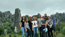 Private Day Tour to Stone Forest and Flower Birds Market including Lunch, Kunming, Private ...