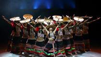 Private night tour to enjoy Dynamic Yunnan show, Kunming, Night Tours