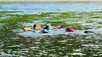 Snorkeling, Hiking and Paddling Combo Package in Matapedia Rivers, Gaspé Peninsula, Snorkeling