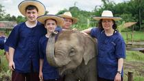 Half-Day Lanna Kingdom Elephant Sanctuary Tour in Chiang Mai, Chiang Mai, Half-day Tours