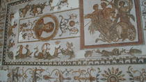 Bardo Museum and Medina Guided Half-Day Tour in Tunis, Tunis, Half-day Tours