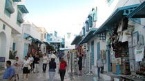 Carthage and Sidi Bou Said Half-Day Guided Tour from Tunis, Tunis, Half-day Tours