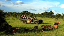 Enjoy an indelible treat with a visit to the Kruger National Park and Blyde River Canyon, ...