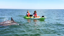 Eco-tour per piccoli gruppi Dolphin Kayak, Virginia Beach