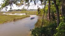 Kayaking and Wildlife Tour of First Landing State Park, Virginia Beach, Kayaking & Canoeing