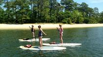 Stand Up Paddleboard Eco-Tour of First Landing State Park, Virginia Beach, Stand Up Paddleboarding