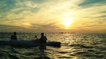 Sunset Dolphin Kayak Tours, Virginia Beach