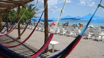 Playa Uvas Private Beach Pass, Cozumel, 4WD, ATV & Off-Road Tours