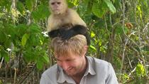 Monkey Island and Indian Village Tour from Panama City, Panama City