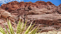 Red Rock Canyon Tour, Las Vegas, Vespa, Scooter & Moped Tours