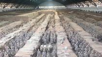 Private Xi'an Terracotta Warriors Tour with Bullet Train Transfer to Chengdu, Xian, Private...