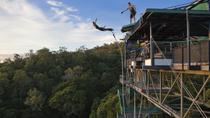 Cairns Bungy Jump and Minjin Swing, Cairns og det tropiske nord