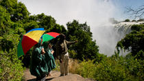 2-Hour Tour of the Victoria Falls, Victoriafallen