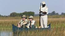 7-Day Botswana Guided Tour from Maun, Maun, Multi-day Tours
