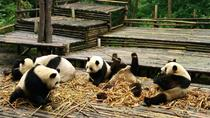 All Inclusive Boutique Tour of Chengdu Highlights, Chengdu, Private Sightseeing Tours