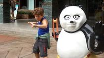 Chengdu Boutique Tour: Giant Panda And City Highlights With Lunch Inclusive, Chengdu, Cultural Tours