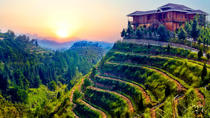Private Day Tour: Anxi Tea Garden And Hongen Rock From Xiamen, Xiamen, Private Day Trips