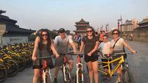 Xi'an Half-Day Experience: Walking and Biking Tour Around Ancient City Wall, Xian, Half-day Tours