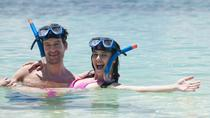 Snorkeling Tour and Cozumel Beach Party, Cozumel, Day Cruises