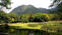El Valle de Anton Tour from Panama City, Panama City, Full-day Tours
