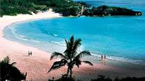 Horseshoe Beach Excursion, Bermuda, Half-day Tours