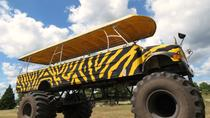 Monster Truck through the Orange Groves from Orlando, Orlando, Half-day Tours