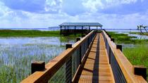 Orlando Wildlife Tour: Airboat Ride and Gatorland Combo Including Transport, Orlando, Day Trips
