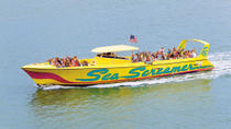Sea Screamer Boat Cruise in Clearwater Beach with Transport, Orlando, Day Trips