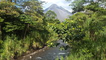 Combo Tour: Hanging Bridges, La Fortuna Waterfall, Arenal Volcano Hike and Paradise Hot Springs, ...