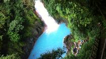 Rio Celeste Hike in Tenorio Volcano National Park, San Jose, Private Sightseeing Tours