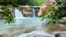 Buena Vista Rainforest Combo Tour, Guanacaste and Northwest, Adrenaline & Extreme
