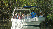 Damas Island Mangrove Tour from Quepos, Quepos, Eco Tours