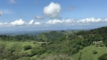 Full Day Monteverde Cloud Forest Tour from San Jose, San Jose, Nature & Wildlife
