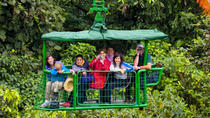 Rain Forest Aerial Tram From San Jose, San Jose, Nature & Wildlife